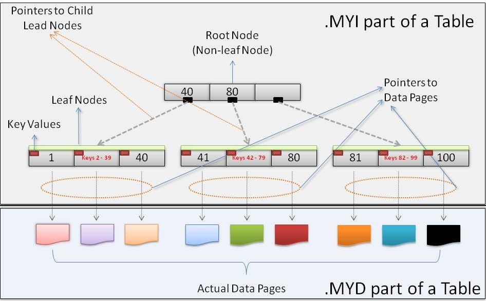 Benefits of BTREE in MySQL - DBAs Stack Exchange