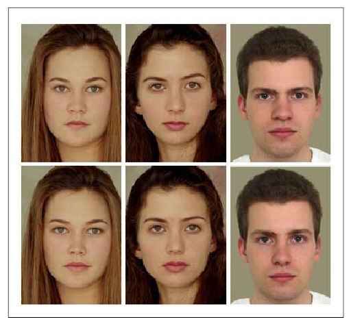Source image for face detection