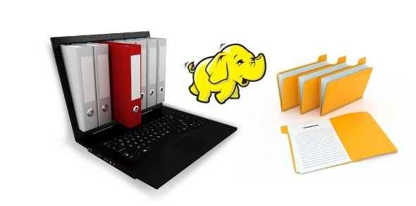 A Peek Into the Hadoop Distributed File System