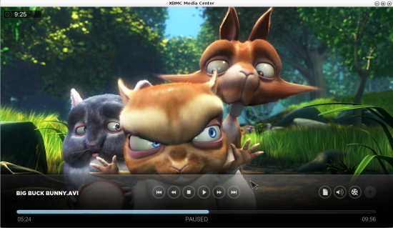 "Figure 6: ""The Big Buck Bunny"" in XBMC"