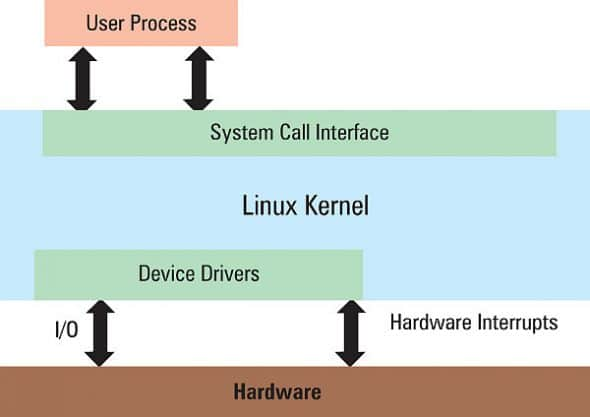 The GPOS Linux kernel