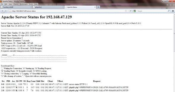 Apache Web server status