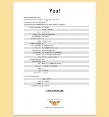 Figure 3 Varnish status result