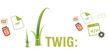 Twig Visual