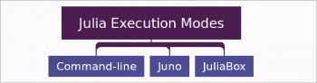 Figure 2 Julia execution modes