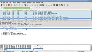 Figure 5 Protocol debugging with Wireshark