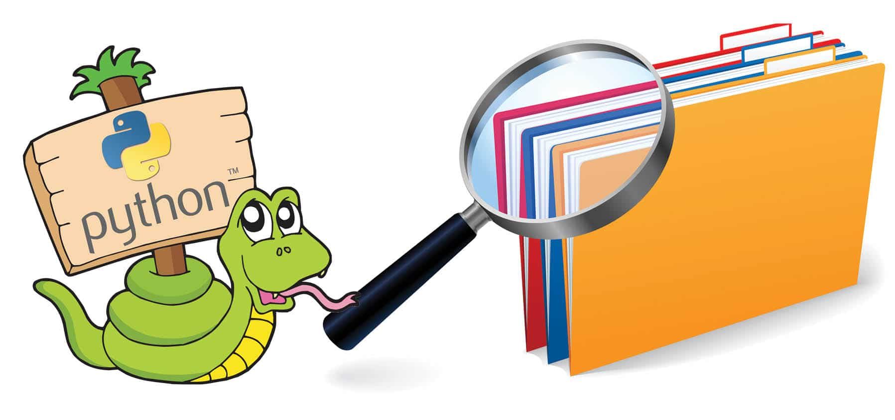 File Search with Python