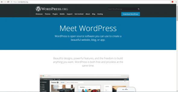 WordPress: Tool for Building Websites