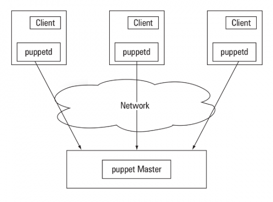 Figure 1: A typical Puppet setup