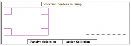 Figure 1: Types of selection